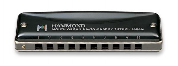 Suzuki Promaster Hammond Harmonica Review